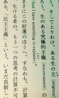 デリダならずもの.jpg